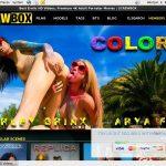 Screwbox.com Gallery