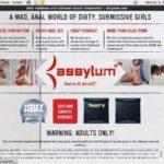 Assylum Trial Link